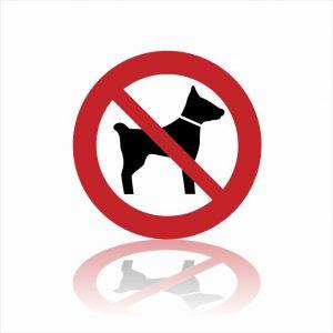 Pictogram geen honden sticker